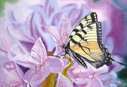 cuadros de mariposas « Mi Galeria de Cuadros al Oleo