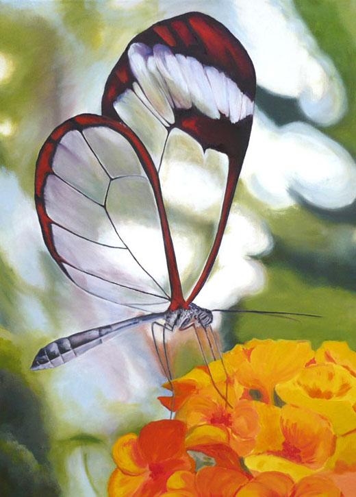 Cuadros de Mariposas Pintados al Oleo « Mi Galeria de Cuadros al ...